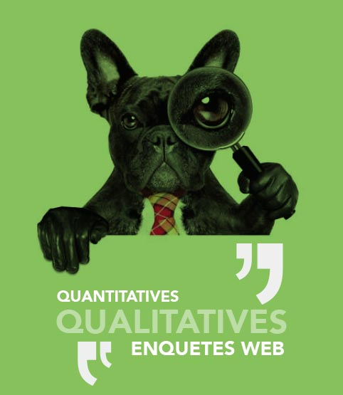 quantitatives qualitatives enquêtes web